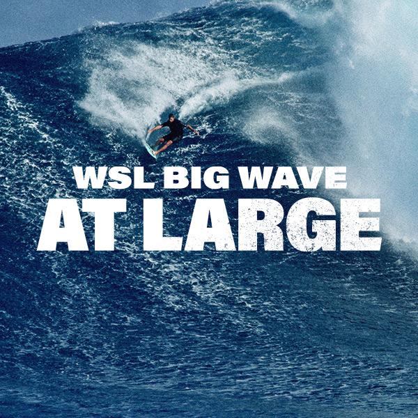 BigWaveAtLarge-EmailImages-IW-1