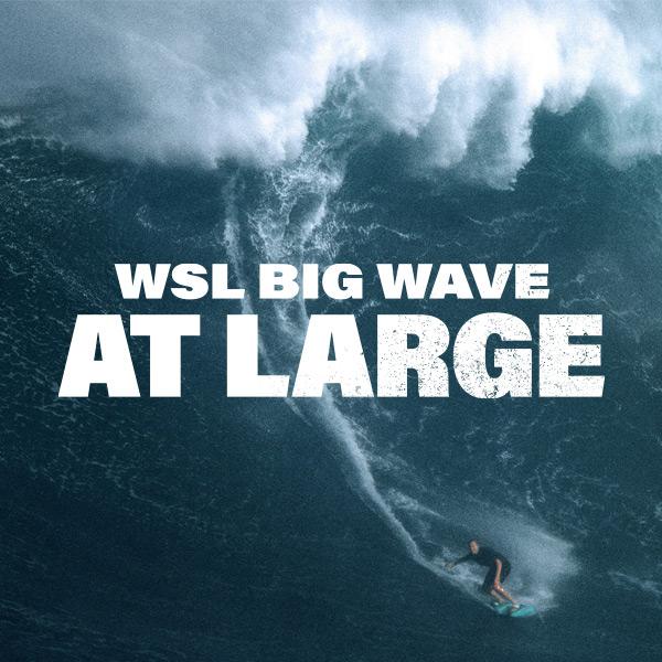 BigWaveAtLarge-EmailImages-PA-1