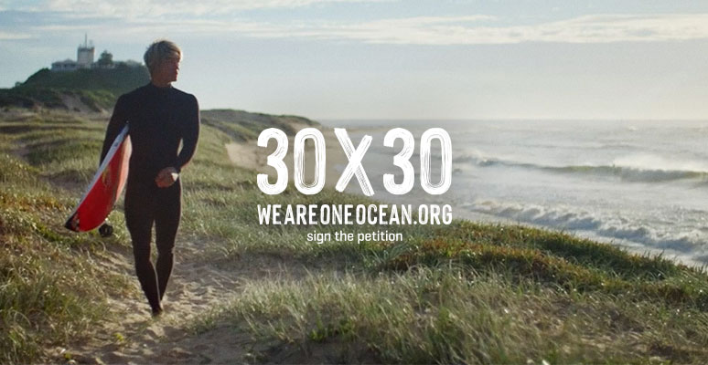 WSL PURE   |   We Are One Ocean